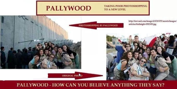 pallywood 29